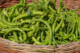 beans-3702999_1920