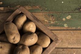 potato-2277455_1920