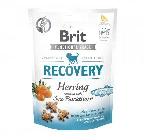 BRIT CARE DOG FUNCTIONAL SNACK RECOVERY HERRING Regeneracja, śledź
