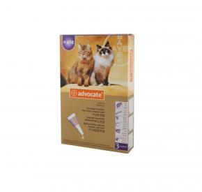 advocate KOT dla kotów o masie ciała 4-8 kg