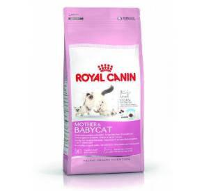 Royal Canin MOTHER & BABYCAT Karma dla kotek karmiących i kociąt od 1. do 4. miesiąca życia 400 g