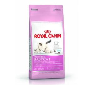 Royal Canin MOTHER & BABYCAT Karma dla kotek karmiących i kociąt od 1. do 4. miesiąca życia 4 kg