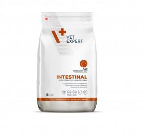 4T Veterinary Diet INTESTINAL CAT 2 kg
