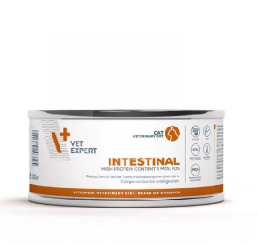 4T Veterinary Diet INTESTINAL CAT 100 g