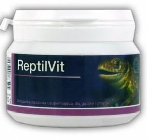 ReptilVit