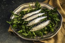 sardines-1468422_1920